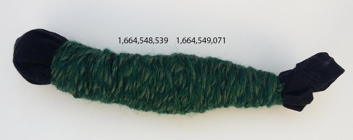 NTP-#255